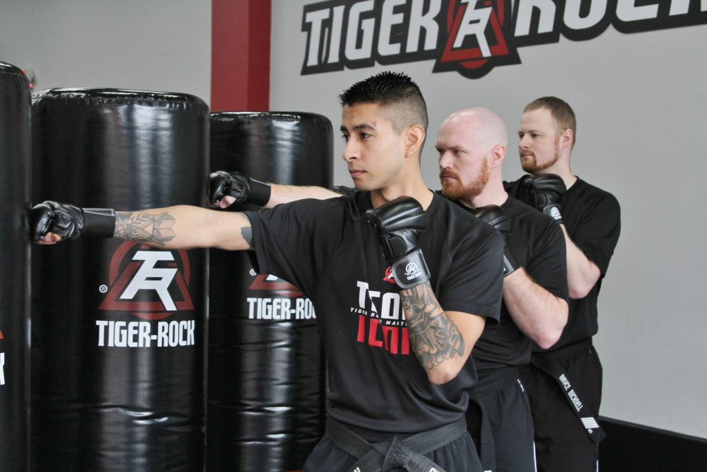 adult martial arts training in southwest austin